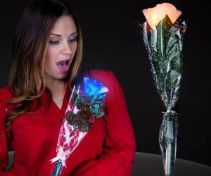Blinking Rose Stem